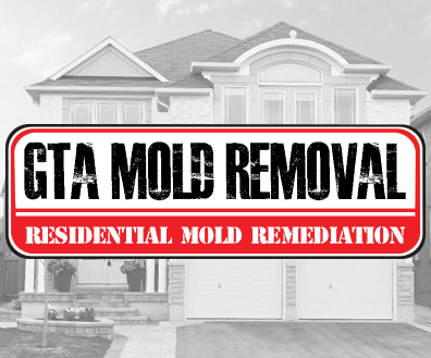 GTA Mold Removal Mississauga reviews, opinions and consumer feedback